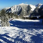 Die Skipiste mit glitzerndem Schnee und Schöner Berg- und Baumlandschaft