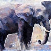 Elefant II, 2017, Öl auf MDF, 70 x 95 cm