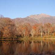 刈込池の紅葉(大野市)
