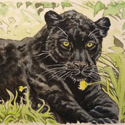 A 36: Black Shaman Cat (Panthera onca). 2017, Aquarell 18 x 13 cm.