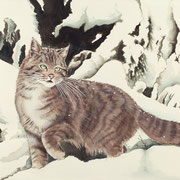 A 11: I Will Survive! (Wildkatze, Felis silvestris). 2014, Aquarell 51 x 35 cm.