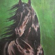 A 13: Uklei Noir (Trakehner). 2014, Acryl auf Leinwand 30 x 40 cm.