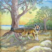 Si 8: Kitfuchs (Vulpes macrotis). 2008, Seidenmalerei 90 x 90 cm: VERKAUFT.