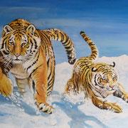 A 34: Winterspaß (Panthera tigris altaica). Acryl auf Leinwand 80 x 60 cm.