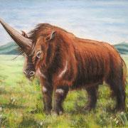 A 16: Elasmotherium (Prehistoric Unicorn). Pastell 40 x 30 cm.