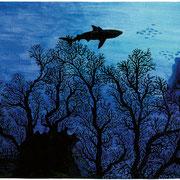 L 2: Hai am Riff. 1992, Aquarell 40 x 30 cm: 100.- Euro.