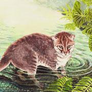 A 18: Wasserspiele (Flachkopfkatze, Prionailurus planiceps). 2015, Aquarell 40 x 30 cm: 450.- Euro.