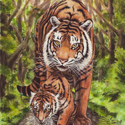 A 17: Mother Takes Care (Panthera tigris sumatrae). 2015, Aquarell 30 x 40 cm.