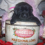 Jill at 3 weeks