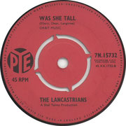 We'll Sing in the Sunshine/Was She Tall  Pye 7N 15732 1964