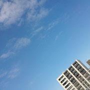 昼から晴れ晴れ*