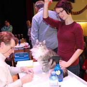 Kiki 10 Monate - erste Show in der Erwachsenenklasse - CAC (1/2)