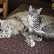 Tiffany und Kiki
