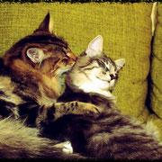 Scypion & Kiki 6 Monate