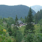 Une  cabane dans la region Feldberg.