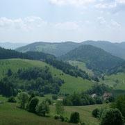 Panoramablick, Foto von einer Wanderung ca. 15 Kilometer von Bad Krozingen entfernt.