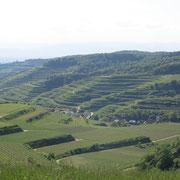 Le Kaiserstuhl autours de Vogtsburg