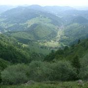 Une belle perspective du Belchen, dans les environs de ma location de vacances, Ruppenthal.