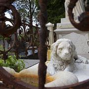 Begraafplaats Oud Eik en Duinen, Den Haag