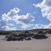 Noordzeestrand bij Scheveningen