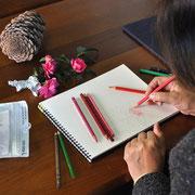 色鉛筆でサザンカを描くNさん
