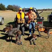 CK and brother Jake hunting Bobwhite 5 months old