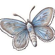Schmetterling - Vignette 2012