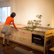 キッチン 宮嶋 Holly Wood Furniture オリジナル