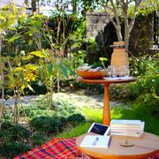 お庭 読書
