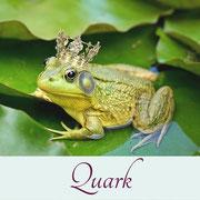 Märchen von der Froschkönigin
