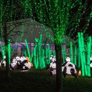 Le paradis des pandas