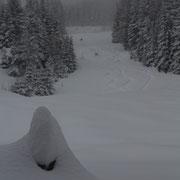 Schnee gabs ja genug...