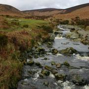 River Dargle, Wicklow Co