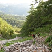 Aufstieg: steil hinauf über den unteren Schneidergraben