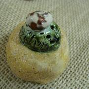 .....so auch diesen kleinen Kaktus, der noch keinen Liebhaber gefunden hat und übrigens auch als Briefbeschwerer eine Dekorative Verwendung finden könnte