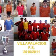 Collage VFS 2011
