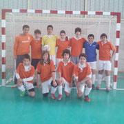 VFS Liga 2010/2011