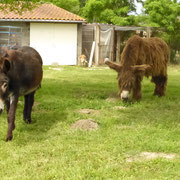 Kiki ( à droite)