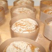 frisch aus dem Ofen: die fertigen Semmeln / Brötchen noch im Semmelring