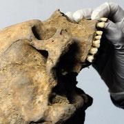 ¿Cómo vivían los vicalvareños de hace 1.500 años?