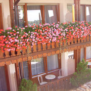 Doppelzimmer mit Balkon,  Hotel- Pension Enzian Todtnauberg