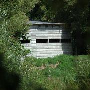L'observatoire ; Marais du Grand Hazé (Briouze, Orne)