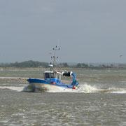 Grande marée dans la Baie de Somme