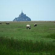 Baie du Mont-Saint-Michel (Manche)