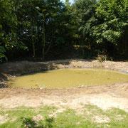Nach weiterer Bodenbearbeitung