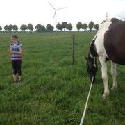 ein Pferd herbei ;-)