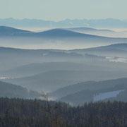 Blick über den Bayerischen Wald zu den Alpen