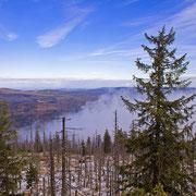 Aussicht vom Rachel über den Böhmerwald