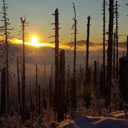 Sonnenuntergang im Nationalpark Bayerischer Wald