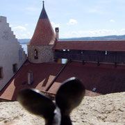 2014 Schloss Grandson Auf Erkundung im Schloss